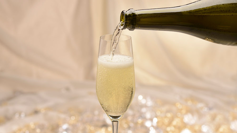 e643dbb9 Dine in Style This New Year's Eve with Special Dining Events